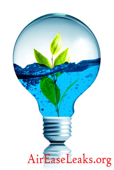 Personal Water And Energy Audit In A Chicagoland Area Home